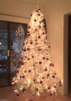 family-christmas-tree-image